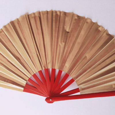 Tai Chi Fan